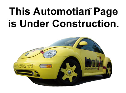 Automotian - Professional Used Auto Parts buying guide